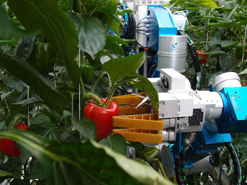 Robotisering in de Agro Food